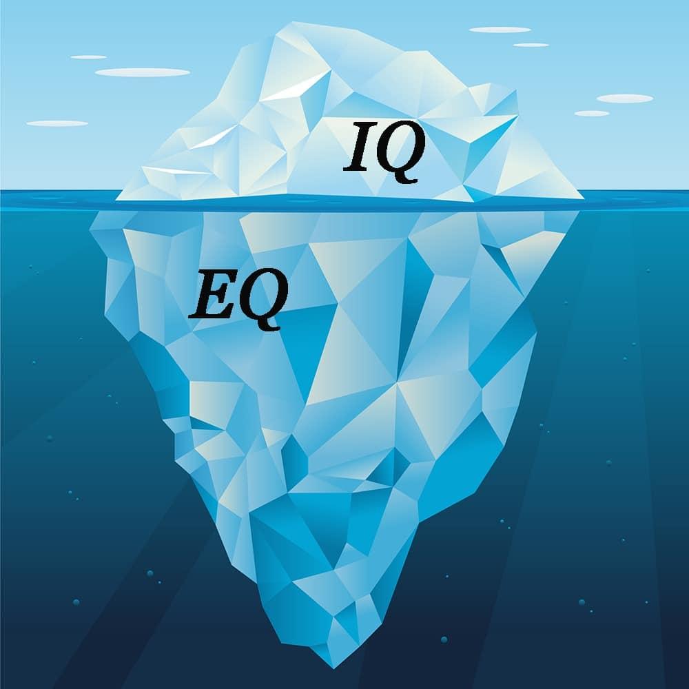 EQ  هوش هیجانی–مدیریت زندگی EQ IQ 2