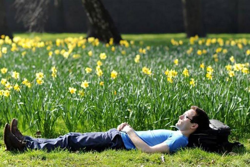 10 نکته و راهکار برای کاهش استرس و کنترل استرس راهکارهای کاهش استرس برای تجربه زندگی بهتر راهکارهای کاهش استرس برای تجربه زندگی بهتر                    5
